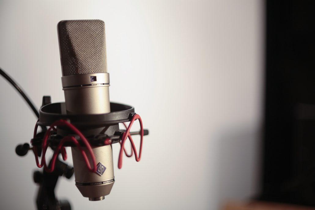 Micro la puce a l'oreille studio